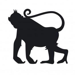 Αυτοκόλλητο Τοίχου Πίθηκος Μαυροπίνακας