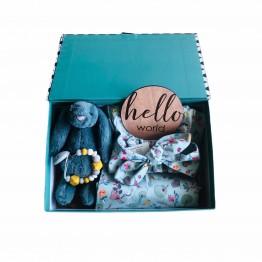 Celebrate Baby Girl Gift Box